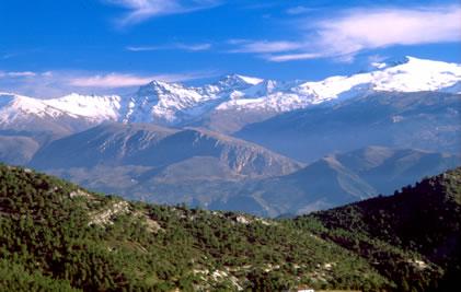 http://blog.acquajet.com/2012/07/20/manantial-de-albarcin-pureza-de-sierra-nevada/